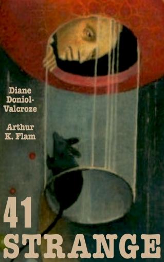 41 Strange book cover